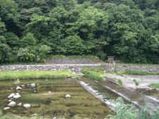 Oohasioohasi_009
