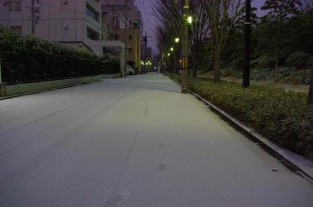 20110116_057
