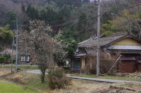 20110402_035