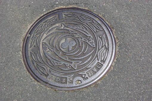 20110505_041