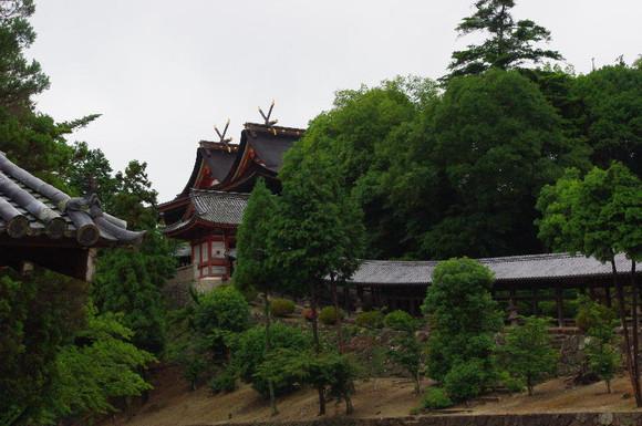 20126_064