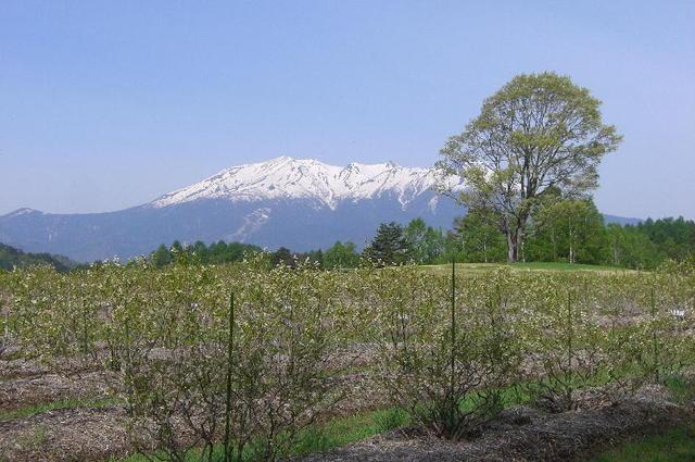 2009・春