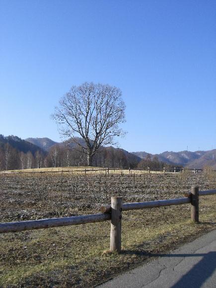 2008・春