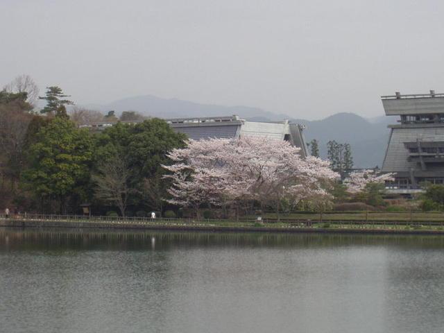 春・宝ヶ池