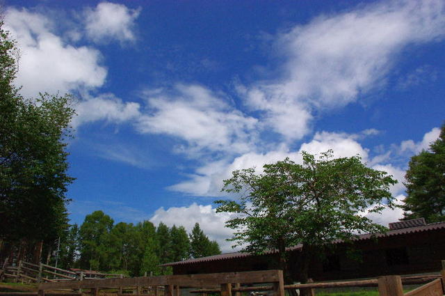 空が空であるように・・・